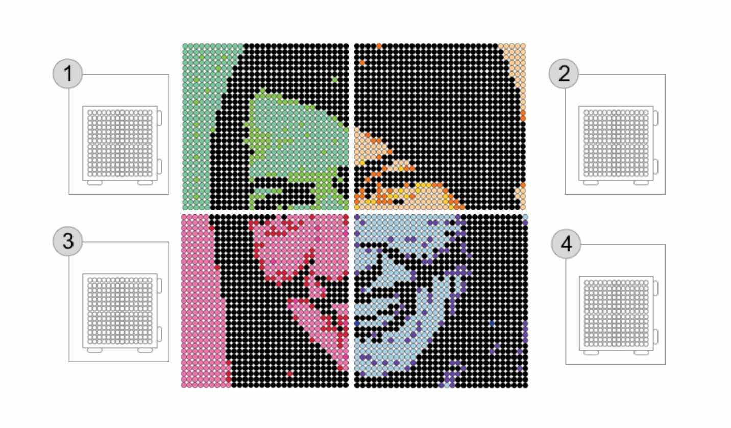 Bilden visar uppdelningen av fyra mönster utskrifter